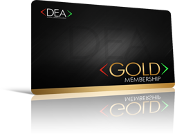 Digital Experts Academy Gold